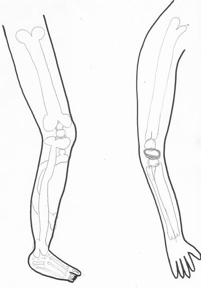 Imprimer le corps en mouvement - Dessin du genou ...
